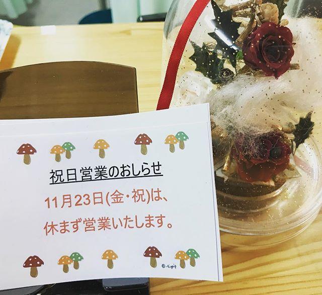 明日11月23日は祝日ですが、休まず営業します。#石川県 #金沢市 #接骨院 #アルコット接骨院 #勤労感謝の日 #休まず営業 #寒くなりそう #祝日