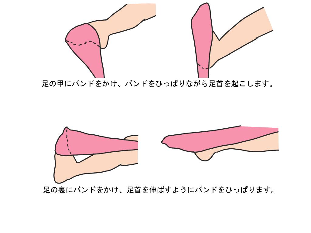 変形性足関節症 セラバンドを使ったトレーニング方法