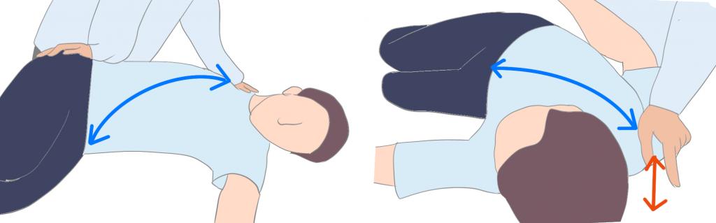 胸郭の柔軟性チェック