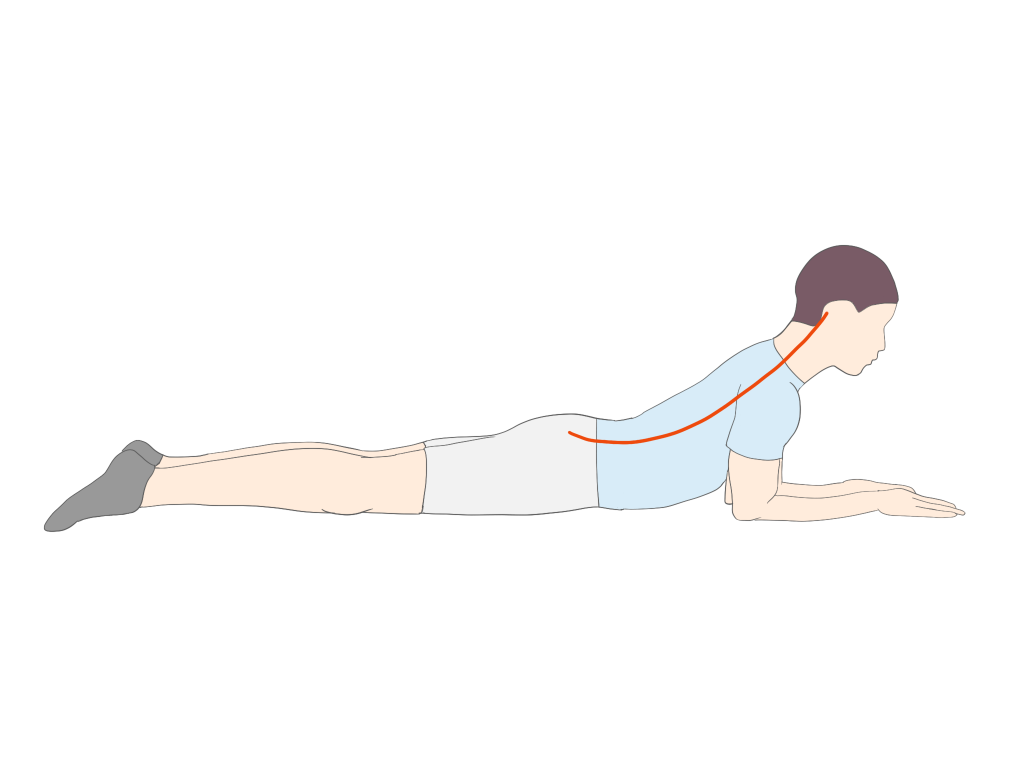 胸椎の伸展