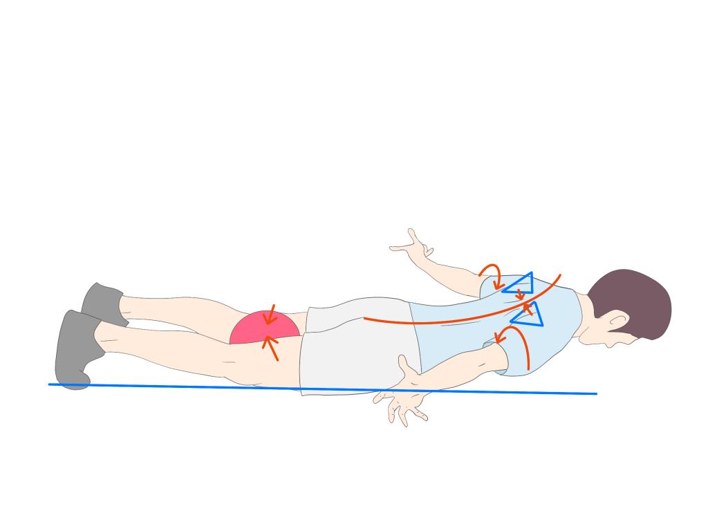 胸椎伸展エクササイズコブラ
