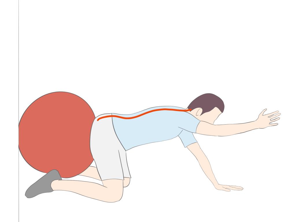 バランスボールを使った体幹の活性化エクササイズ