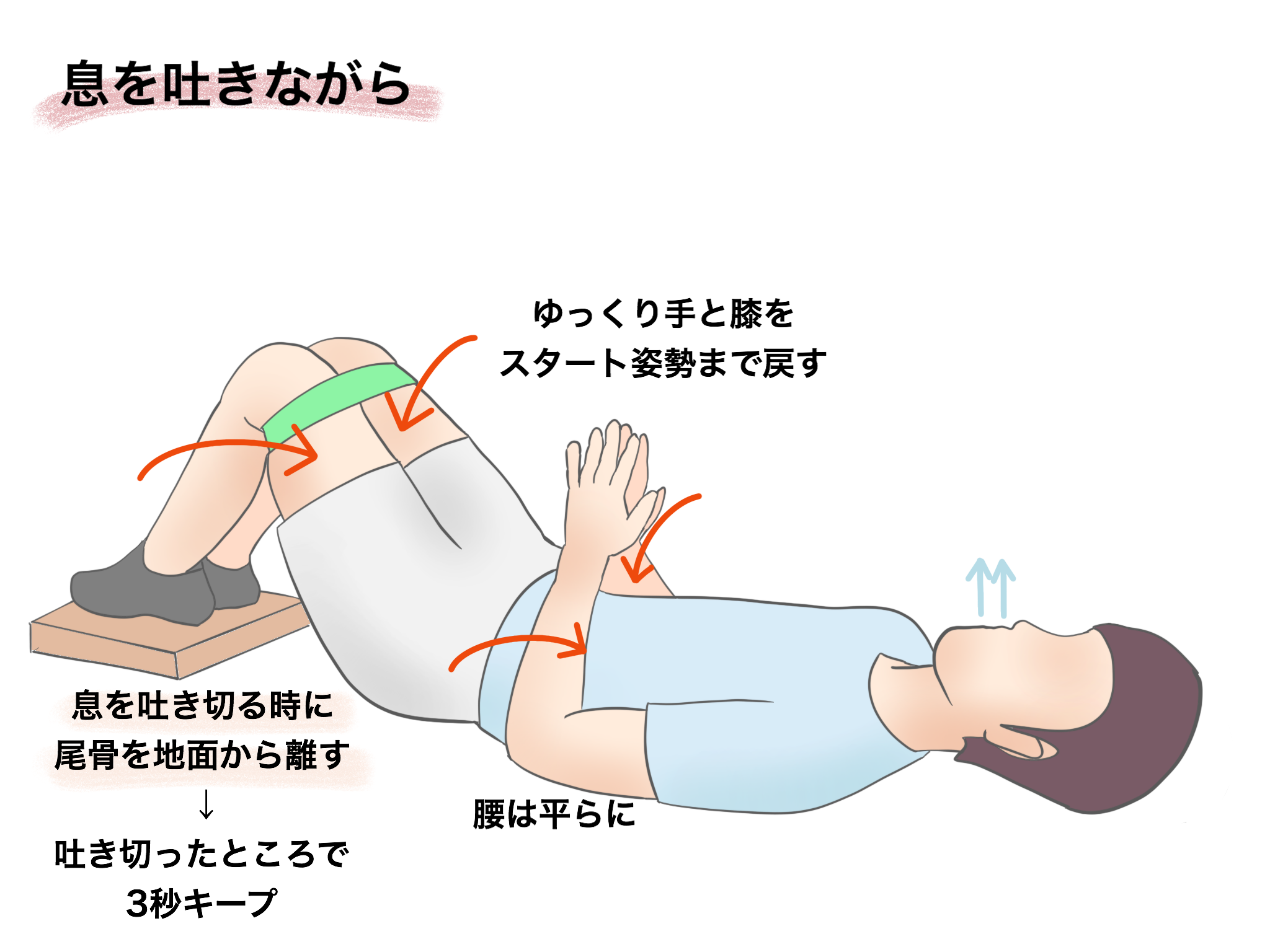 Supine hooklying synchronized resisted glute max【金沢市のアルコット接骨院のパーソナルトレーニング】