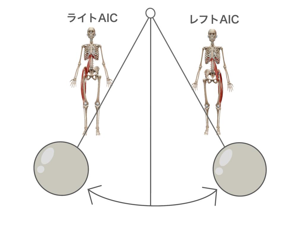 左右のアンテリア・インテリア・チェインが均等に機能する理想的な状態