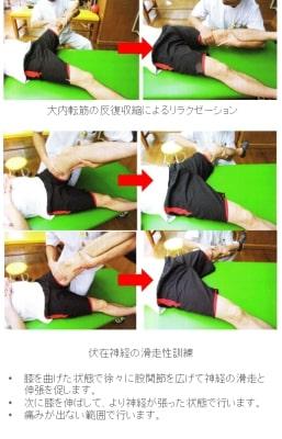 ハンター管症候群【金沢市のアルコット接骨院の疾患解説】