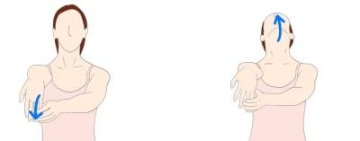 肘部管症候群 尺骨神経伸張性改善エクササイズ
