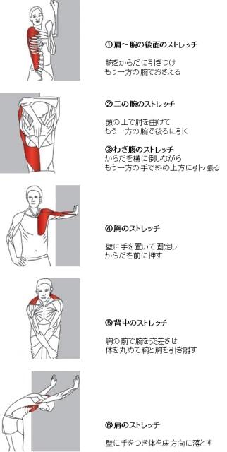 上腕二頭筋長頭腱炎ストレッチ