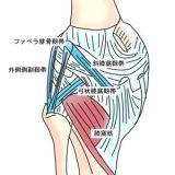 膝関節後外側回旋不安定性の原因や治療法【金沢市アルコット接骨院】
