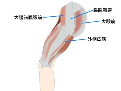 腸脛靭帯とは