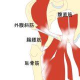 鼡径部痛症候群(グロインペイン症候群)について【金沢市アルコット接骨院】